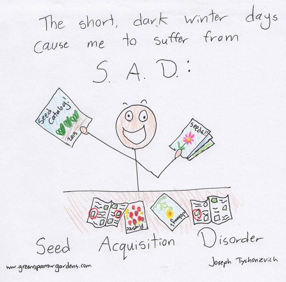 Seed Acquisition Disorder