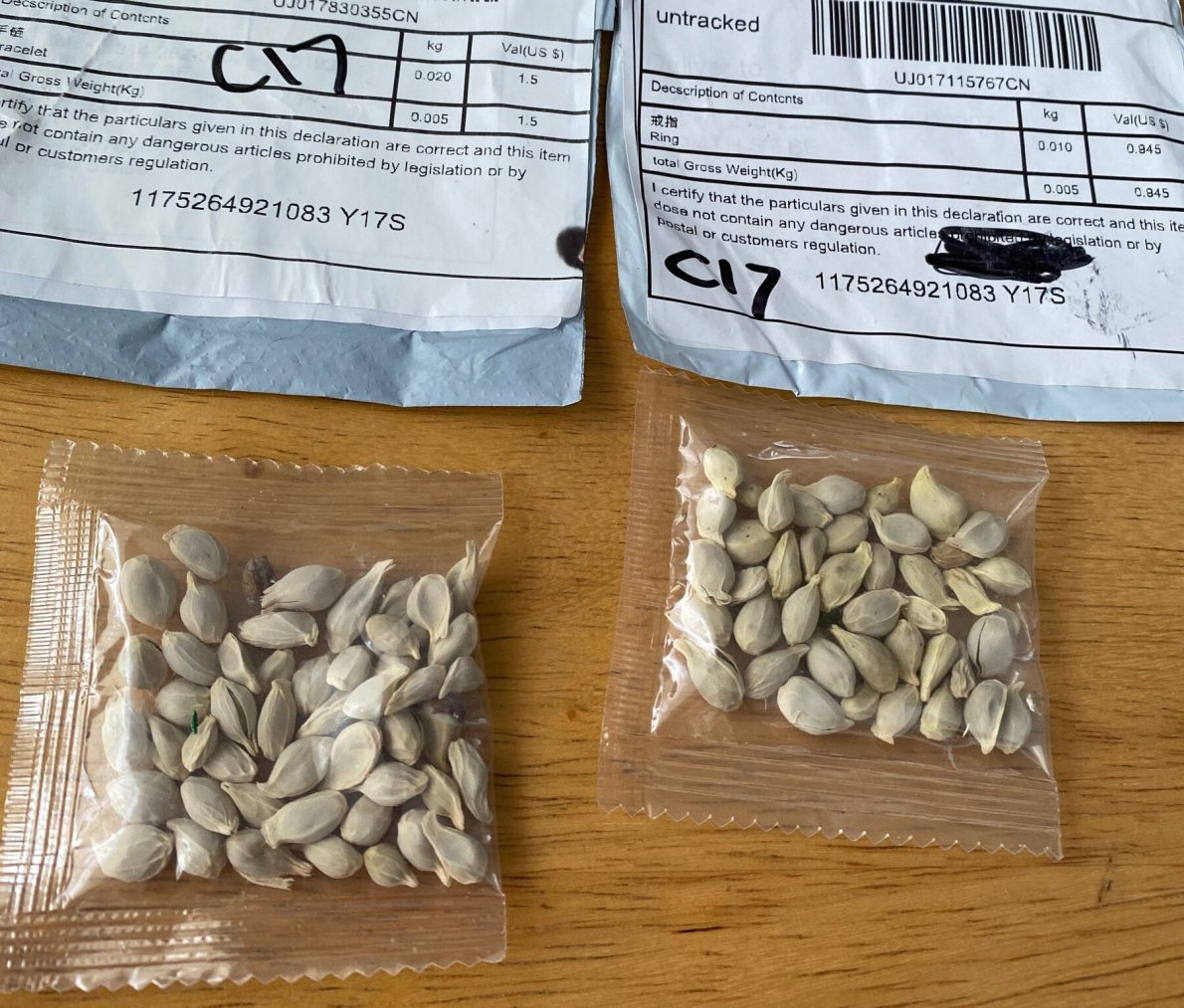 Warning: Unsolicited Seeds from China