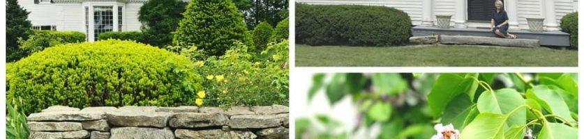 Field Trip: Bellamy-Ferriday House