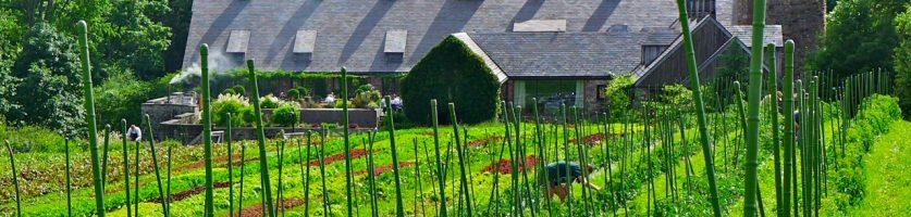 Field Trip:  Stone Barns Center and Union Church