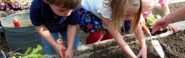 Nursery School Kids Have Fun With Compost & Plants
