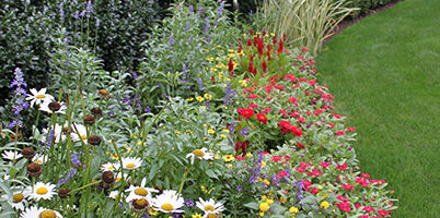 Gardeners' November 5th Zoom Program & Meeting