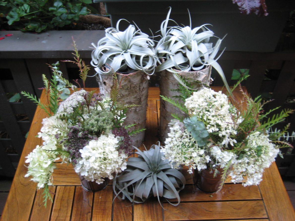 Branford Garden Club Flower Show