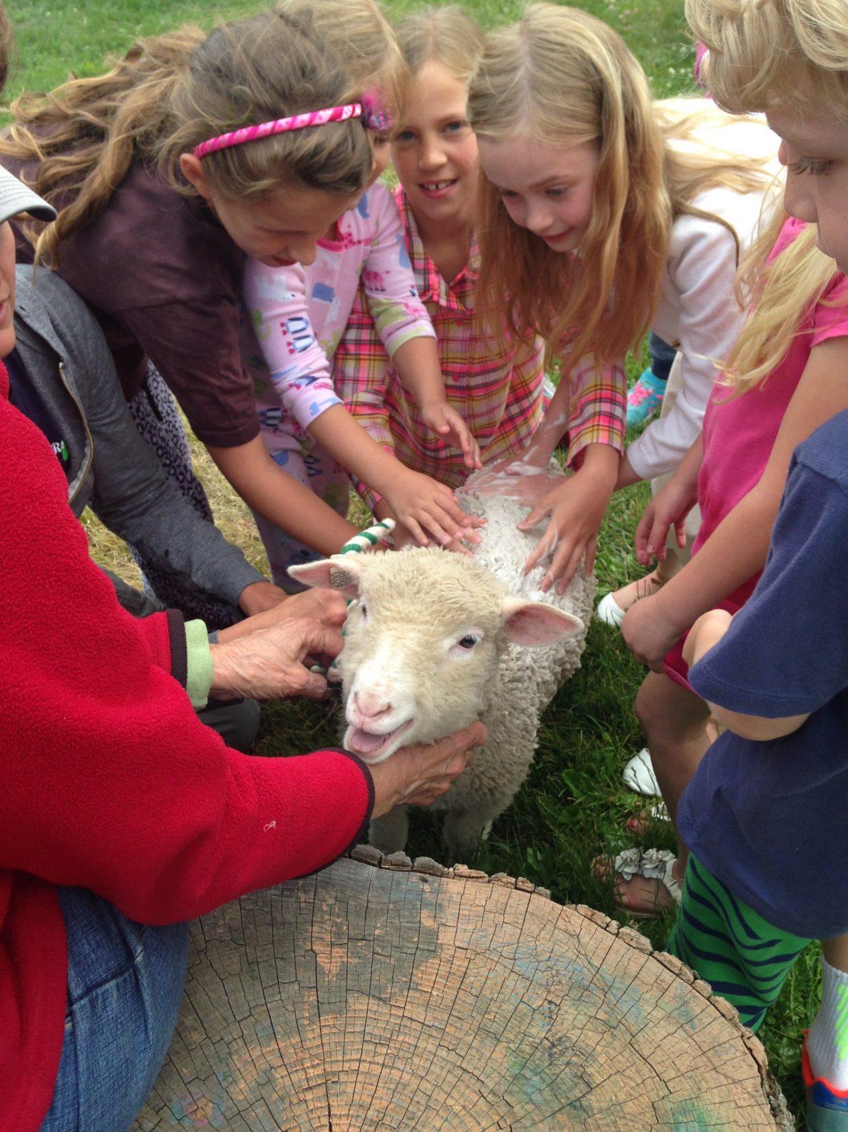 Garden Farm Art Camp Thrills