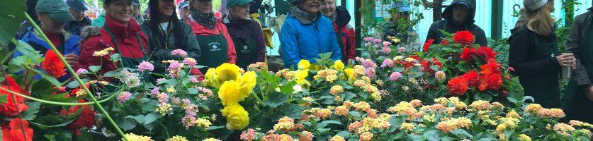 Spring Market Survived Mother Nature's Onslaught!