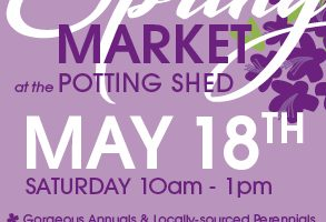 Spring Market Is Just Around the Corner!