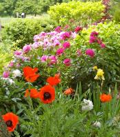 Spring Plant & Tag Sale Setup