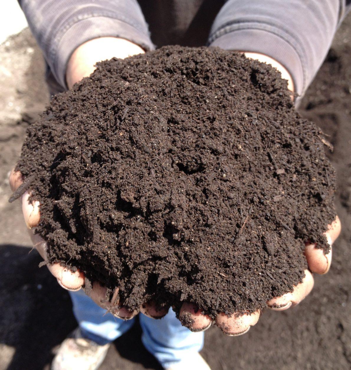 Hort Report:  Composting for the Home Gardener