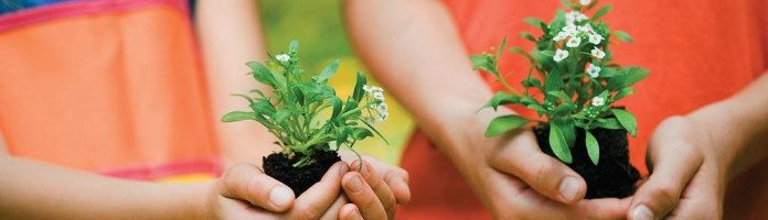 New Helpful Links for Gardening with Kids