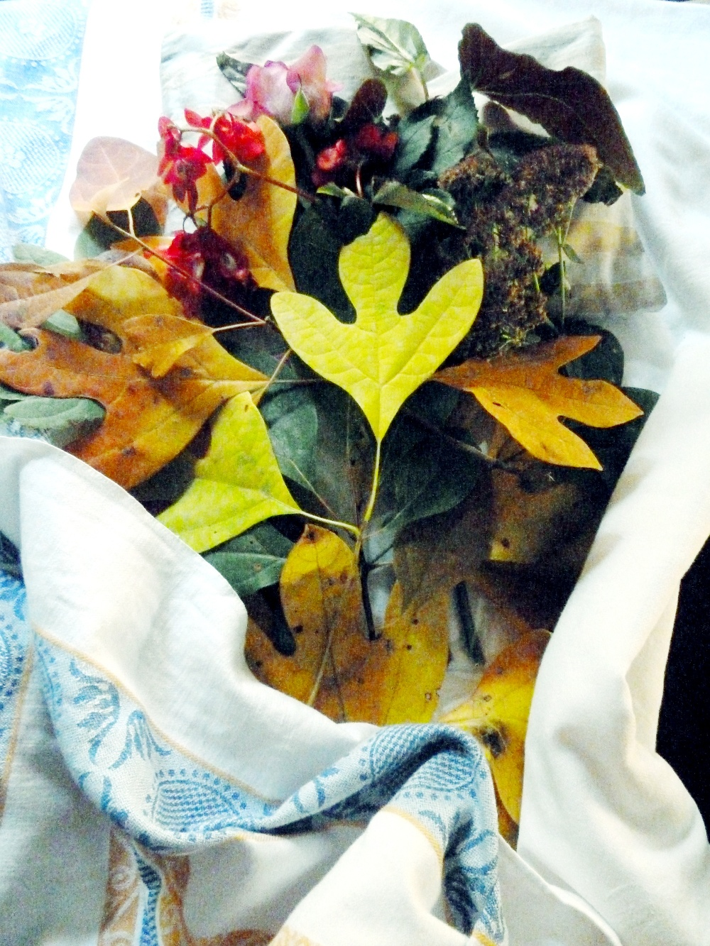 After School Nature-Inspired Art Camp