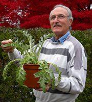 Organic Gardening 101 with Nick Mancini