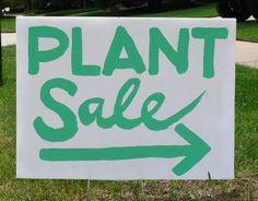 Rowayton Gardeners Spring Sale