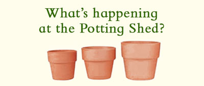 What's Happening at the Potting Shed?