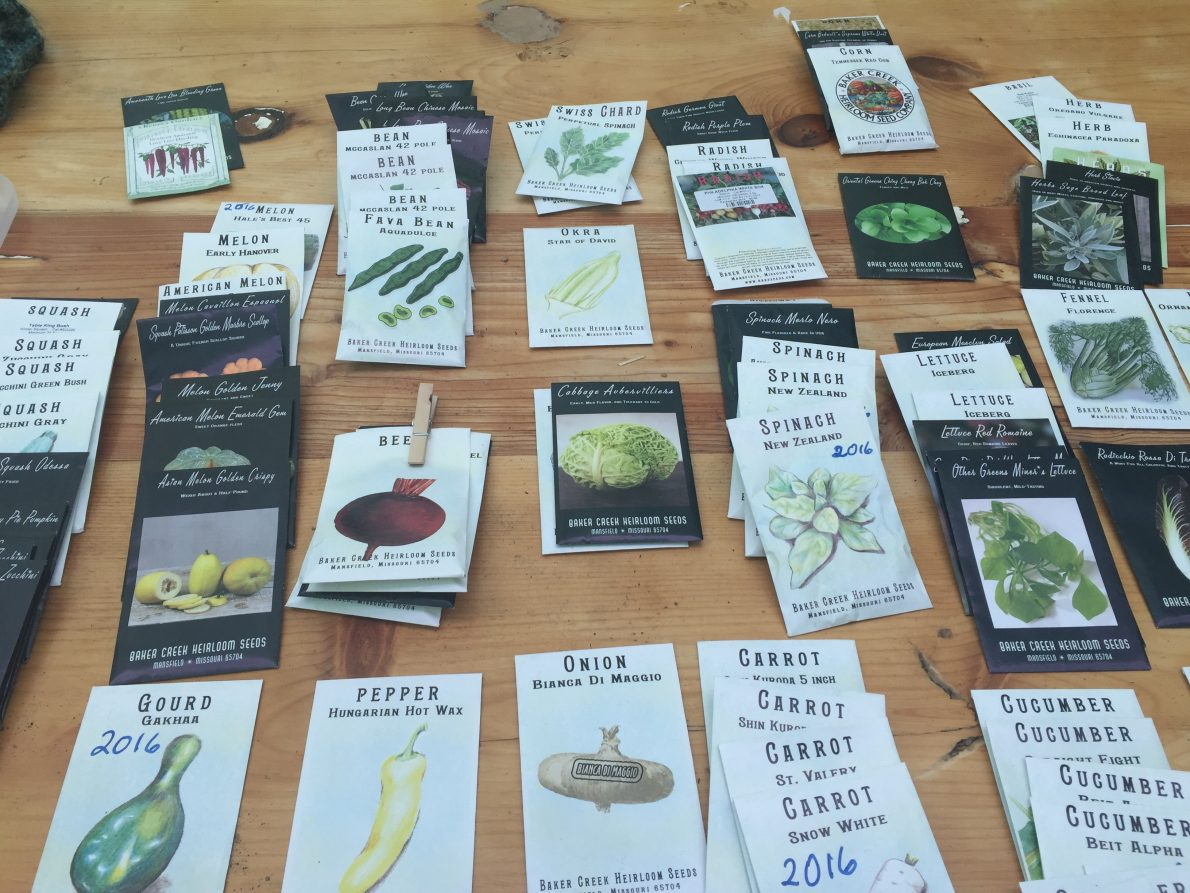 Potting Shed Seed Library Debut