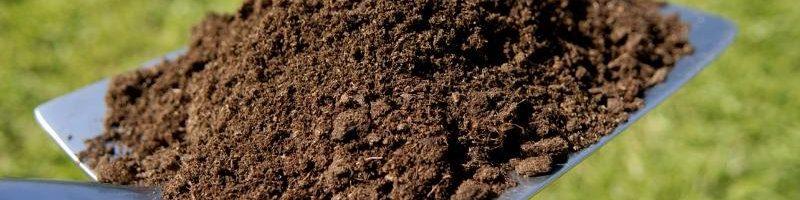 April Hort Report:  Testing Your Soil